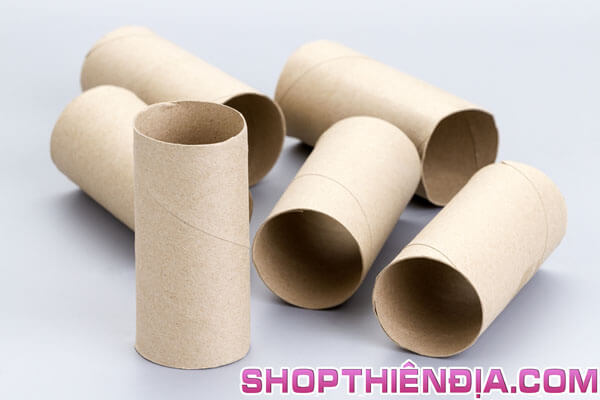 Lõi của cuộn giấy vệ sinh